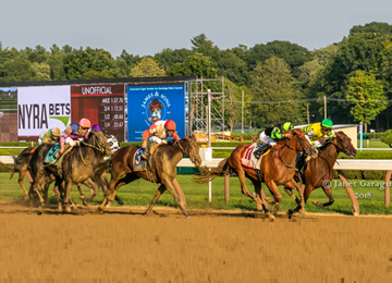 English Soul Wins The East View Stakes (Photo: Chelsea Durand)