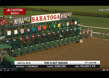 Replay: English Soul Wins the Fleet Indian Stakes